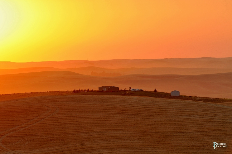 Palouse Harvest Sunsetwm